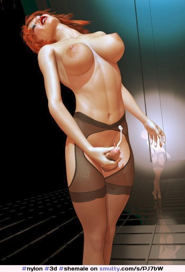 http://galleries2.adult-empire.com/90/9031//988/pics/004.jpg #3D #shemale #nylon
