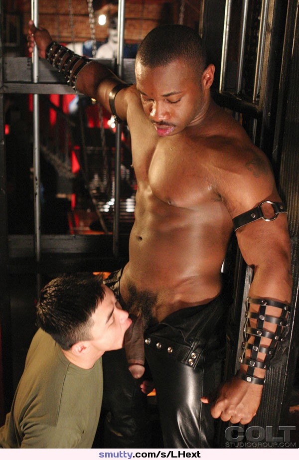 #hot #gay #interracial #cocksucker #twink #hung #black #leather #daddy #dick #cocksucking #gayboy #bbc #blowjob #hardcore #bigdick #bigcock