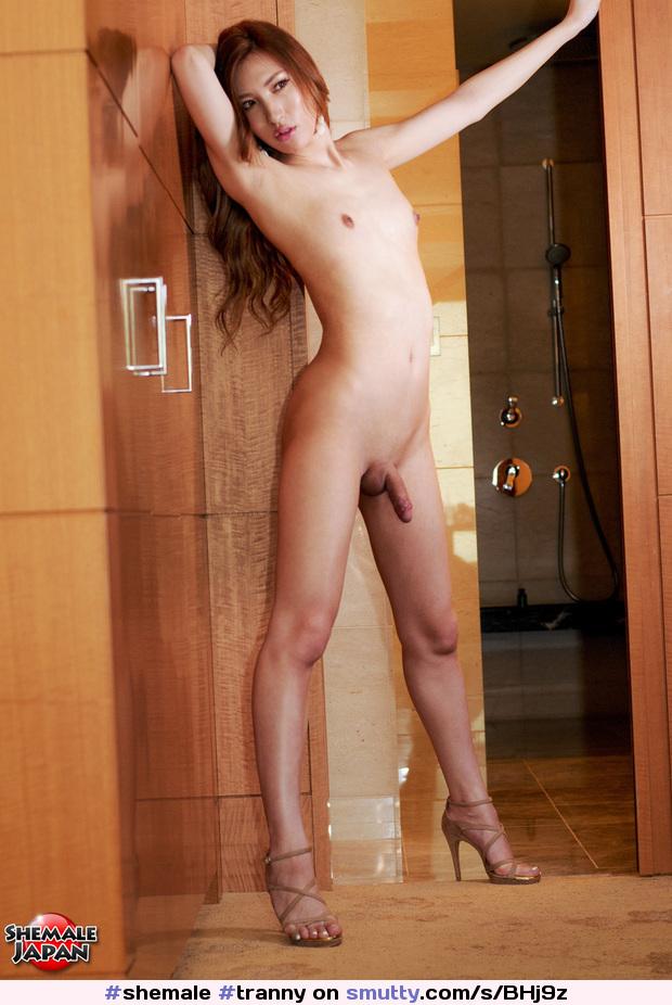 #shemale #tranny #transsexual #tgirl #ladyboy #traps # ...